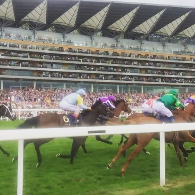 Winter romping home for the win at Royal Ascot